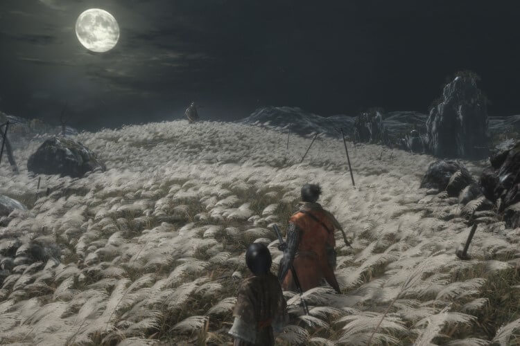 Screenshot do jogo Sekiro: Shadows Die Twice.